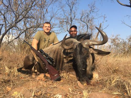 Blue Wildebeest Bull – Savage .325 WSM, 220gr Sierra